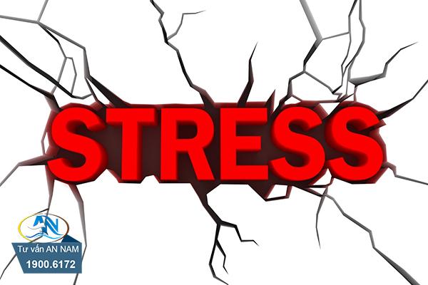 đối mặt với stress